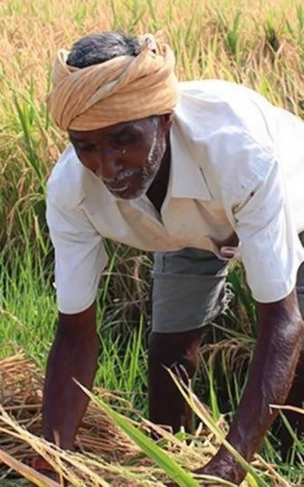 NDA eyes farm,rural fix ahead of 2019 Lok Sabha elections