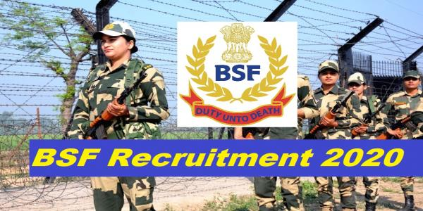 BSF Jobs Recruitment 2020 - Inspector, Sub-Inspector and other 114 Posts