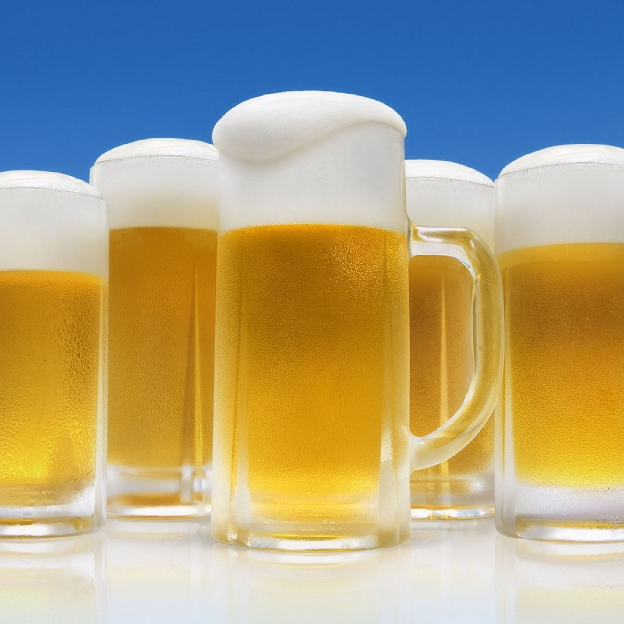 10 Reasons why beer is not bad for you