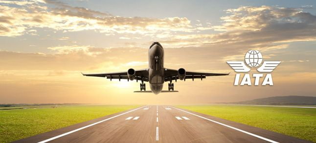 India only country globally where domestic air travel dipped in February: IATA